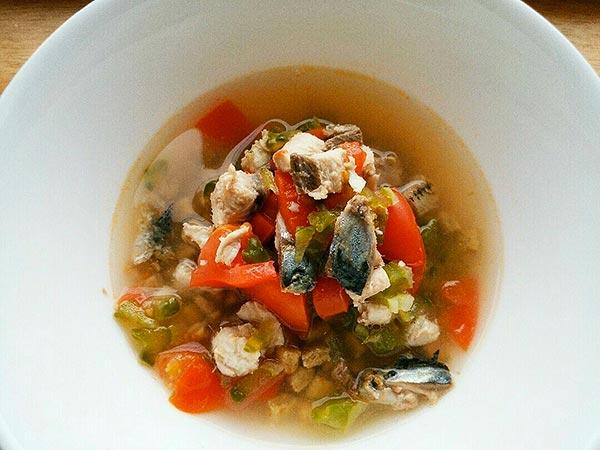 犬猫の心臓病におすすめレシピ「鰯と夏野菜のスープかけごはん」
