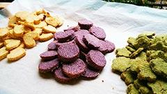 犬猫のはちみつパウダーを使ったレシピ「彩りおからクッキー」