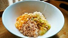 犬猫のレトルト肉レシピ「ビビンバ風」