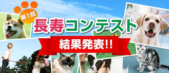 第1回 長寿コンテスト 結果発表!!