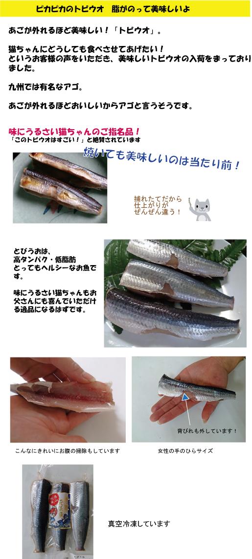 犬猫の手作りご飯の為に美味しく新鮮な魚を魚屋がお届けします