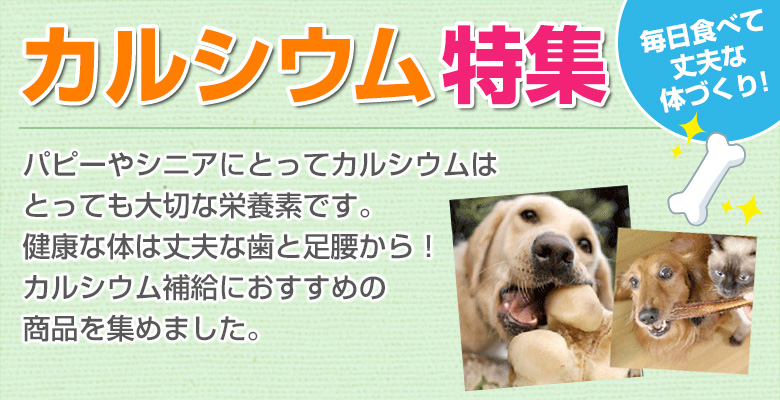 犬猫のカルシウム補給におすすめ食材特集