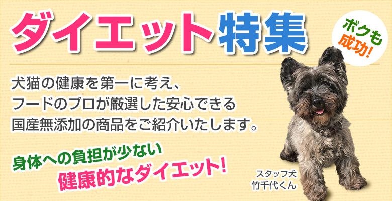 犬猫のダイエットにおすすめの食材特集