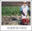 乾燥野菜の原料