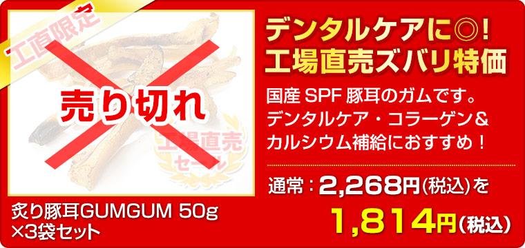 ≪工場直売セール≫ 炙り豚耳GUMGUM 50g ×3袋セット