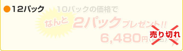 ≪工場直売セール≫ ベニソンビッツ 40g(×12袋セット)