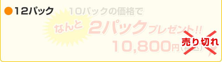 ≪工場直売セール≫ 鮭ビッツ 40g(×12袋セット)